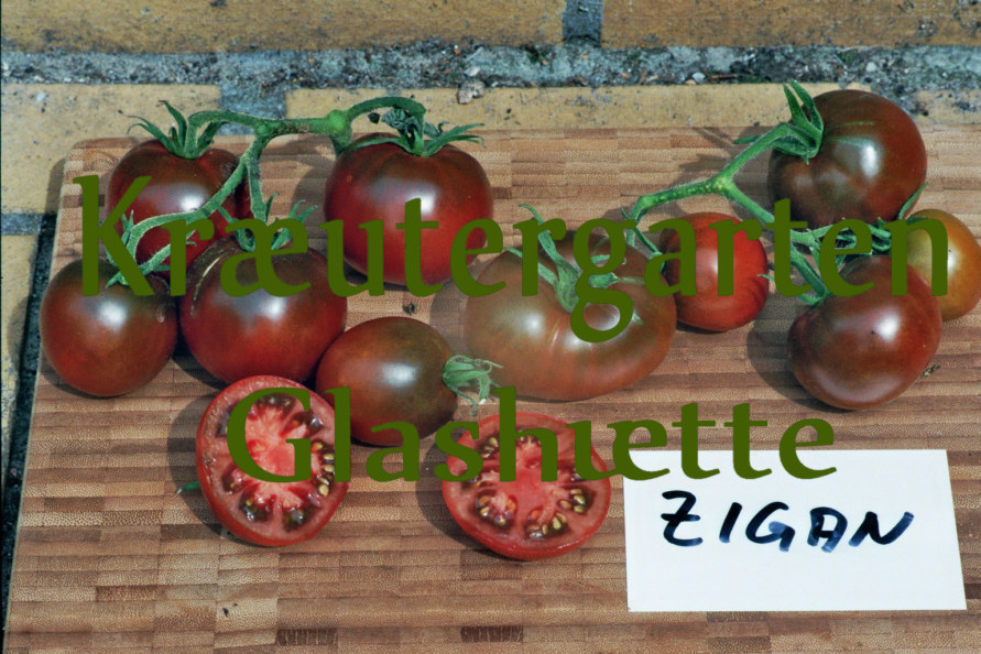 tomatensorten im kr utergarten glash tte amish cherry. Black Bedroom Furniture Sets. Home Design Ideas